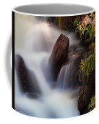 The Cascades Coffee Mug
