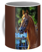 The Champion Coffee Mug