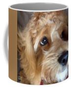 The Closeup Coffee Mug