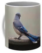 The Cold Shoulder Coffee Mug