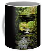 The Coming Of Autumn - Barnes Creek - Lake Crescent - Washington Coffee Mug