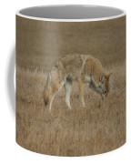 The Coyotes Coffee Mug