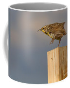 The Crane Kick Coffee Mug