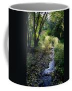 The Creek At Finch Arboretum 2 Coffee Mug