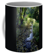 The Creek At Finch Arboretum Coffee Mug