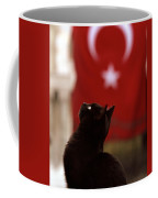The Curious Cat Coffee Mug