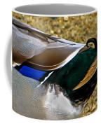 The Curl Coffee Mug