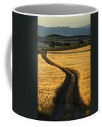 The Curved Way. Coffee Mug