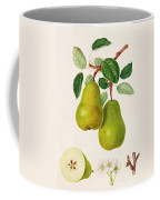 The D'auch Pear Coffee Mug by William Hooker