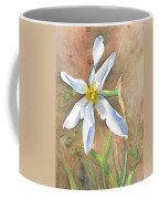 The Delicate Autumn Lady - Narcissus Serotinus Coffee Mug