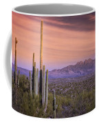 The Desert Beckons  Coffee Mug