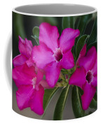 The Desert Rose  Coffee Mug