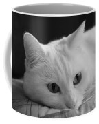 The Dreamer Cat Coffee Mug