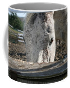 The Drinking Fountain Coffee Mug