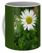 Natures Tear  Drops Coffee Mug