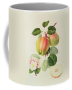 The Dutch Codlin Coffee Mug by William Hooker