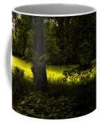 The End Of The Path Mirror Image Coffee Mug