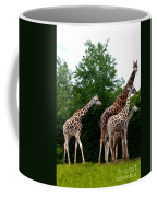 The Extended Family Coffee Mug