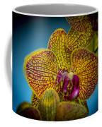 The Face Of Color Coffee Mug