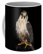 The Falcon Coffee Mug