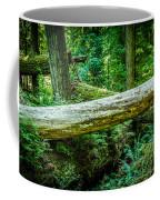 The Fallen Collection 12 Coffee Mug