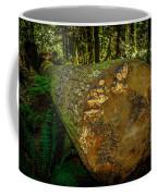 The Fallen Collection 6 Coffee Mug
