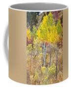 The Fence Line Coffee Mug