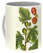 The Fig Tree Coffee Mug