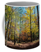 The Final Days Of Autumn Color Coffee Mug