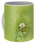 The First White Daisy Coffee Mug