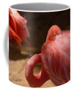 The Flamingo Wakens Coffee Mug