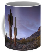The Fleeting Light  Coffee Mug