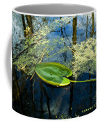 The Floating Leaf Of A Water Lily Coffee Mug