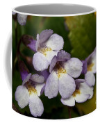 The Flower Of Orpheus Coffee Mug