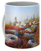 The Fog Clears At Dolly Sods Coffee Mug