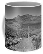 The Forever Road Coffee Mug