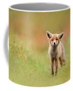 The Funny Fox Kit Coffee Mug