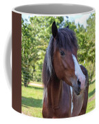 The Gaze Coffee Mug