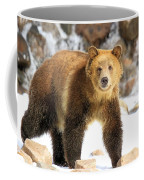 The Grizzly Strut Coffee Mug