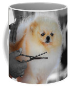 The Groomer Coffee Mug
