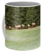The Harem Coffee Mug