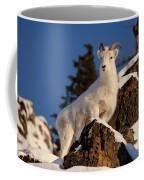 The High Ground Coffee Mug