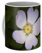 The Humble Dog Rose Coffee Mug