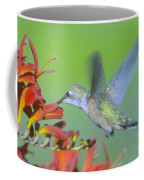 The Humming Bird Sips  Coffee Mug by Jeff Swan