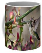 The Hummingbird And The Slipper Plant  Coffee Mug