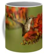 The Hummingbird Turns   Coffee Mug