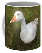 The Inquisitive Goose Coffee Mug