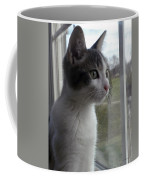 The Inquisitive Kitty Jackson Coffee Mug