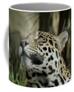 The Jaguar's Gaze Coffee Mug