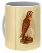 The Java Owl Cassell Coffee Mug